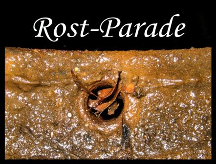 Rost-Parade 32