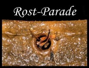 Rost-Parade 05/2016