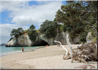 cathedral_cove_7