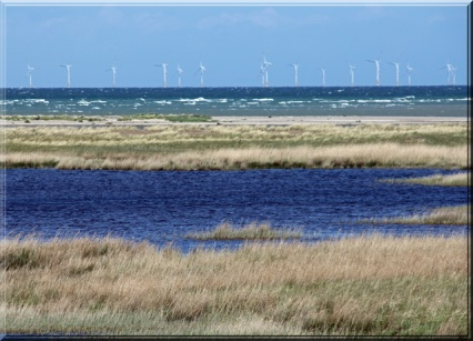 Windpark in der Ostsee